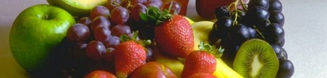 Mestrado Agricultura Biologica